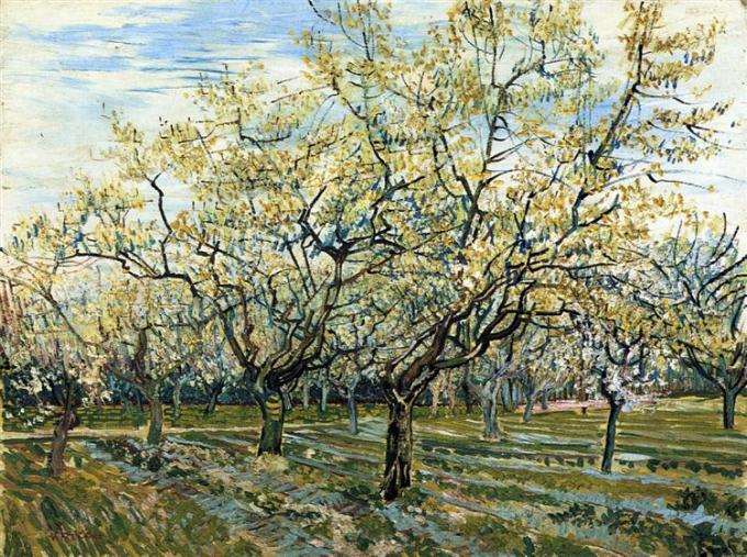 orchard-with-blossoming-plum-trees-1888